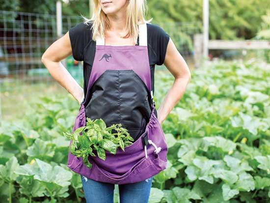 La tierra y su PH: consejos de jardinería para un portero …