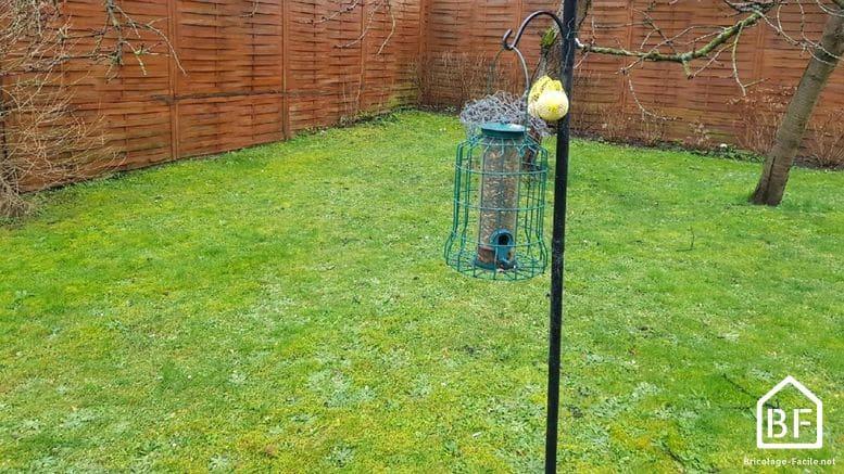 Ayudemos a las aves a pasar el invierno …